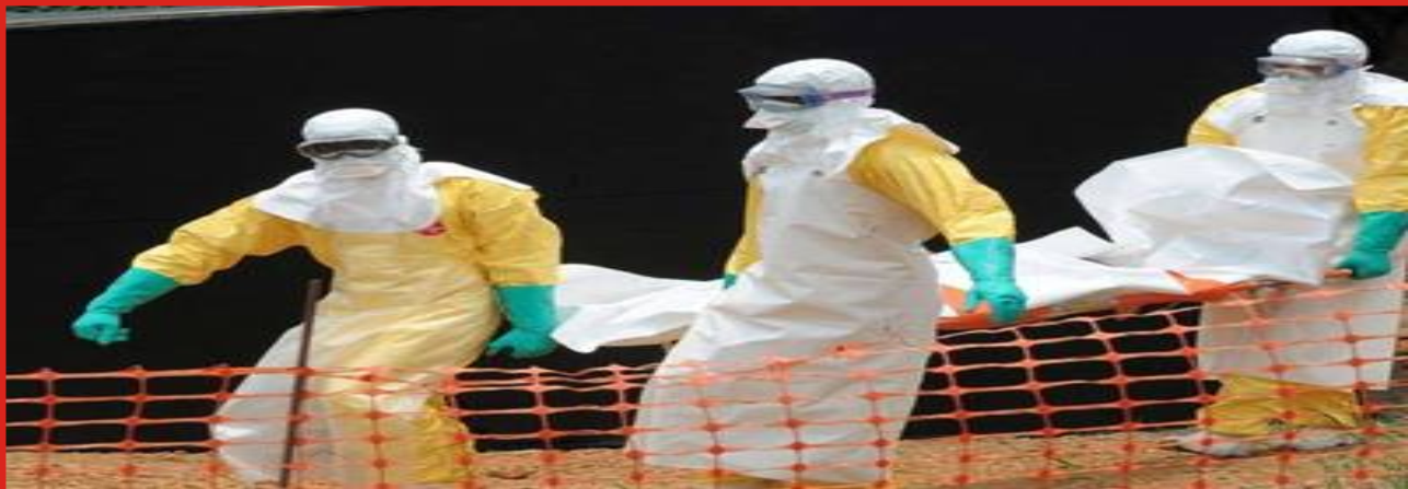 Ebola: The Insurance Effect